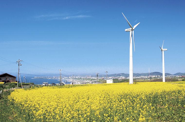 大きな風車がぐ〜るぐる